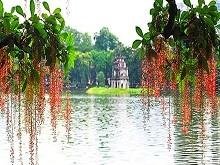 Classic Tour Hanoi - Halong - Ninh Binh 5D4N